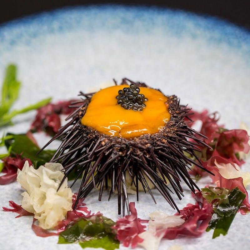 【Gourmand】メインは神戸牛!雲丹や鮑、フォワグラやオマールなど豪華食材を堪能する美食ディナー