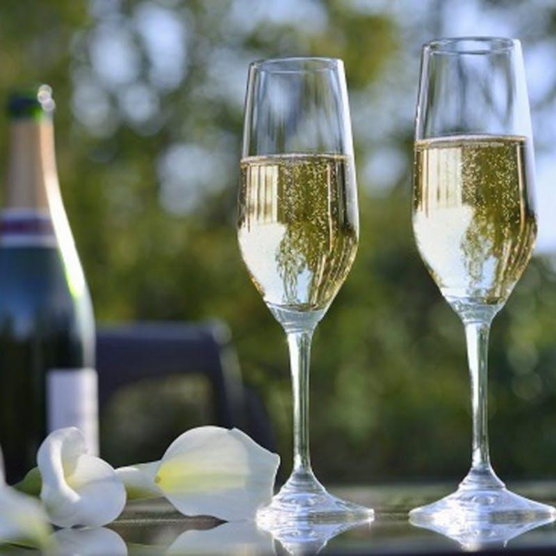 【Tasting Course】本格イタリア料理コース5品+乾杯スパークリングワイン