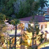 緑に囲まれた隠れ家レストランで優雅なひとときを…