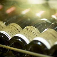 繊細かつ潔いコンテンポラリーな料理と上質なワインとのマリアージュ