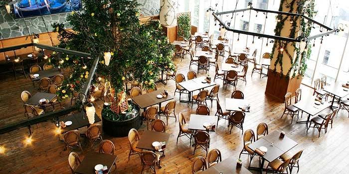記念日におすすめのレストラン・リストランテ ベニーレベニーレの写真1