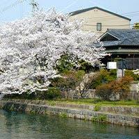 疏水に四季を映す六盛 岡崎の閑静なたたずまいのなかで