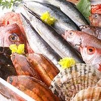 全国の農家や漁港を回り集めた「生産者の顔が見える」食材を使用しております