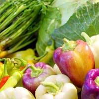 素材料理と新和食