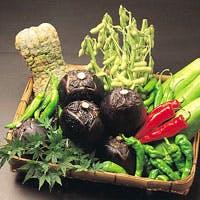 京の伝統野菜。契約農家直送