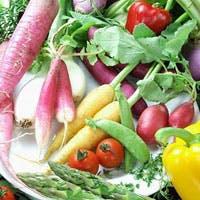 産地直送の新鮮なお魚や野菜 旬の素材をお手頃な価格でご提供