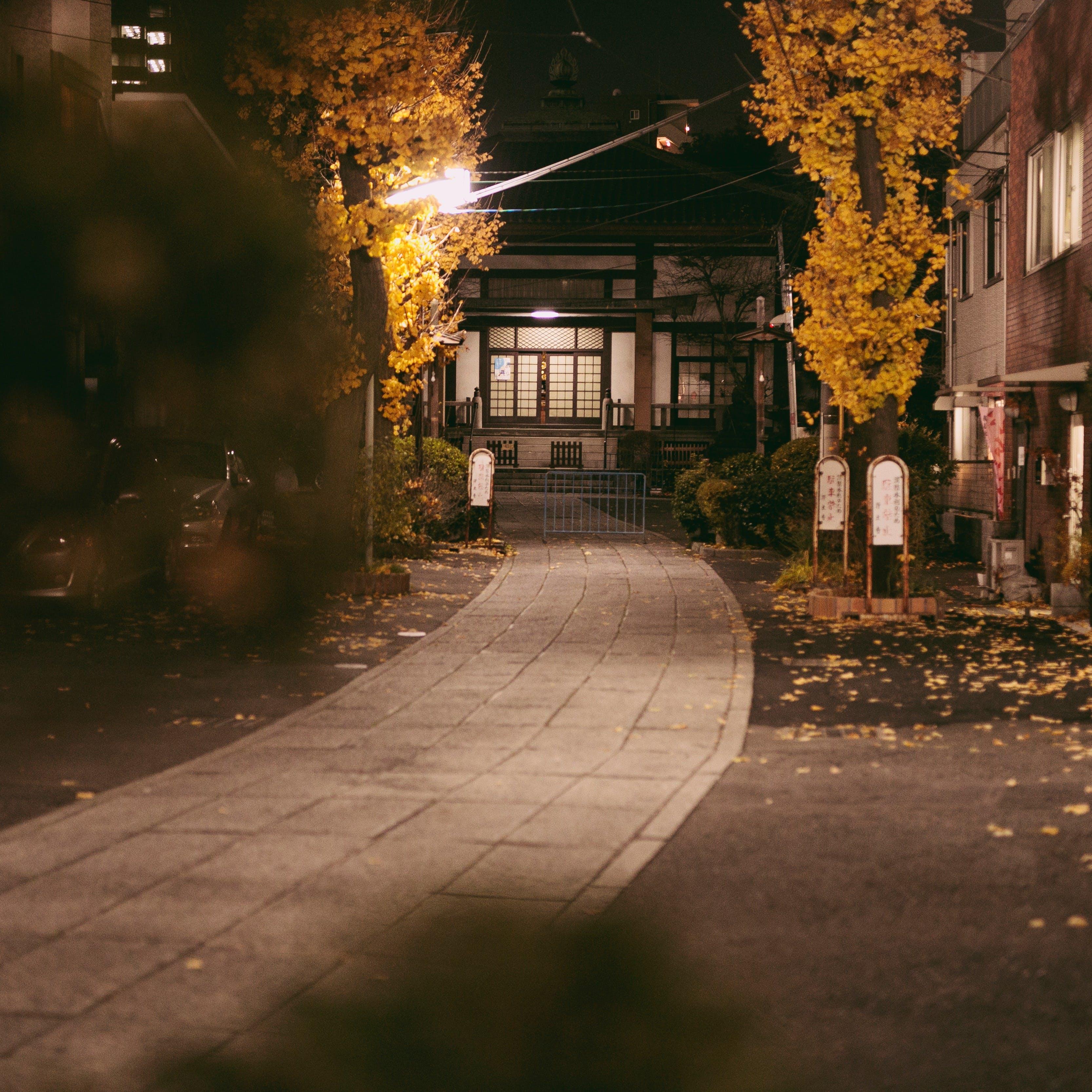 お寺の境内を通らないとお店にたどり着けない本当の隠れ家