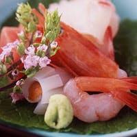 鴨川と東山を借景 カジュアル気分で楽しむ京の味