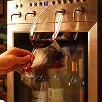 美味しい食事と共に豊富なワインをどうぞ