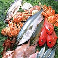 日本各地から直送している厳選された旬の食材を使用