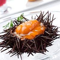スペシャリテである濃厚なウニフランなど…新鮮魚介を使ったフレンチイタリアン