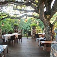 大自然の森の中に佇むレストラン。アジアンリゾートをモチーフにした店内