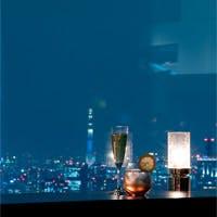 東京都庁北塔最上階 地上202mから見渡す絶景をお楽しみください