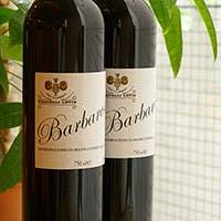 アレーナロッサお勧め イタリア各地のボトルワイン