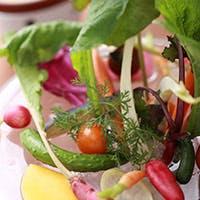 毎日届く新鮮なお野菜