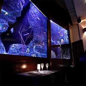 煌く水槽が印象的なラグジュアリーな癒しの空間