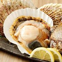 大地の恵み 北海道食材