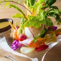 契約農家から届く新鮮お野菜