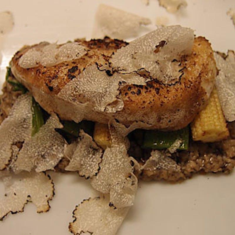 【Wメインおまかせコース】肉&魚料理・パスタ2品等全8品+スパークリング含む選べる1ドリンク
