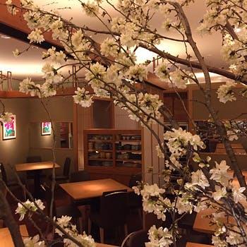 木の温もりが溢れるモダンな店内で堪能する旬の日本料理