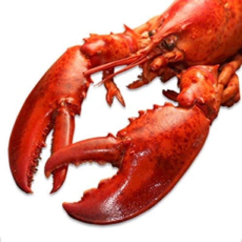 【5つ星・南の島コサムイランチコース】贅沢なカナダ産オマール海老など全5品(窓際優先)