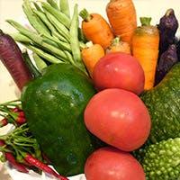 江戸東京野菜・世田谷野菜・鎌倉野菜など、こだわりの食材を使用