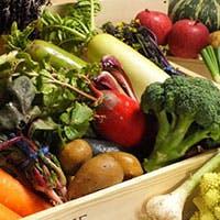 生産者さん自らが直送してくれる、とっても新鮮で拘りの丹波野菜を使用しています