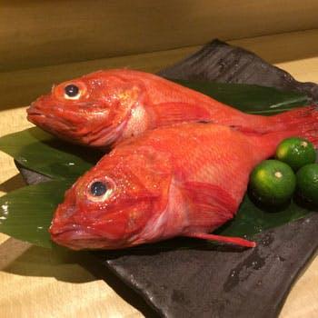 自慢できる美味しいお魚から作る自慢の料理
