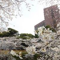 カジュアルダイニング ザ・ビストロ/ホテル椿山荘東京