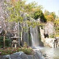 日本庭園と壮大な滝を望みながら、京情緒にあふれた寛ぎの時間を