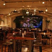 こころとおなかを満たす食と音楽のライブ空間