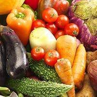 無農薬の有機野菜にこだわり、体に優しい素材を使用。健康志向の方におすすめです