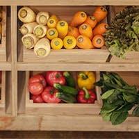 お料理は野菜を中心としたヘルシーメニューだからあれもこれも欲張りに