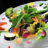 土からこだわって作られる新鮮な有機野菜