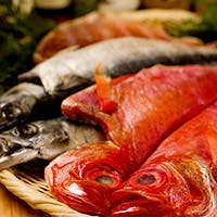産地直結、新鮮魚介は自社トラックで千葉は館山の港から獲れたてを直送で