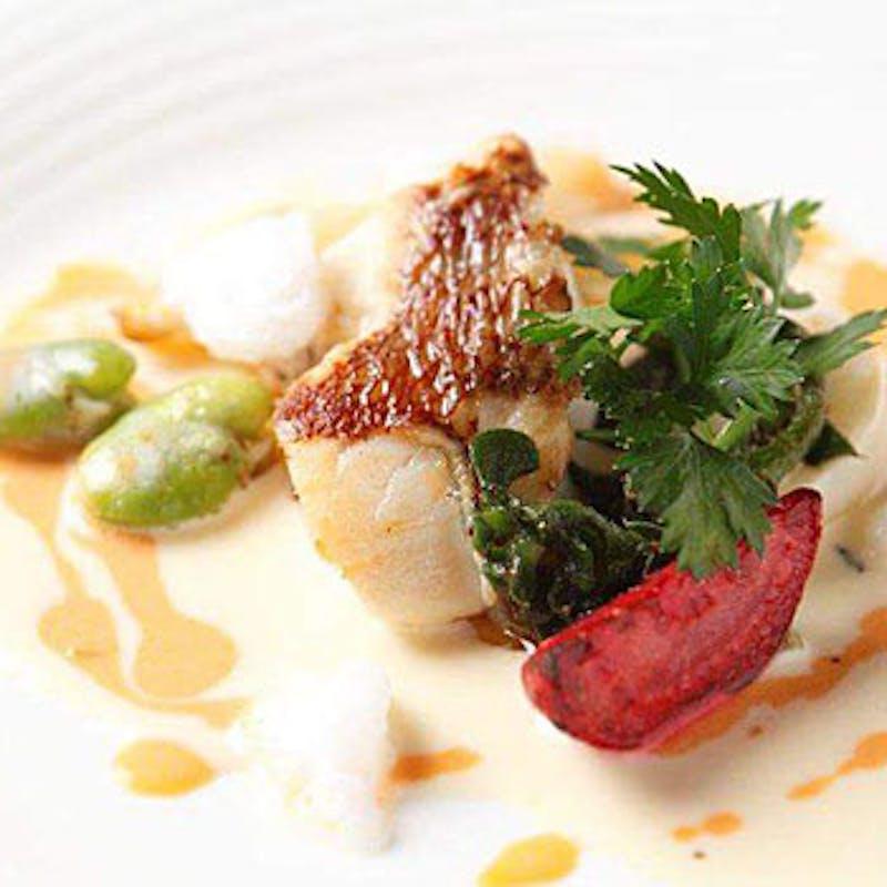 【Dコース】魚料理&肉料理のWメインなど全6品+シャンパンも選べる1ドリンク