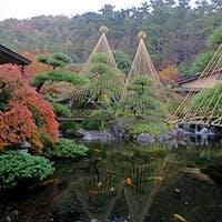 日本庭園をご覧頂ながら、落ち着いた大人のひとときを