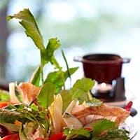 野菜をたっぷりと使用した女性好みのイタリアン