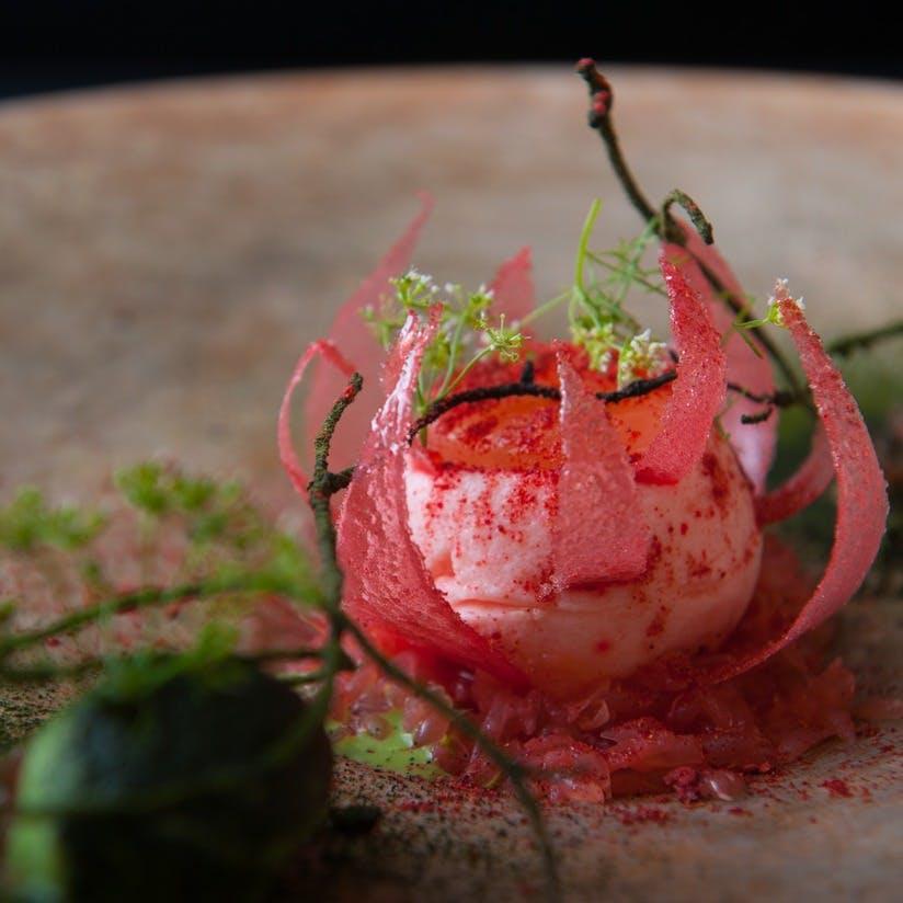 クラシカルな技を礎に斬新なプレゼンテーションで構築されるフランス料理