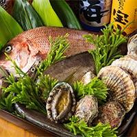 全国各地より旬の鮮魚を厳選。野菜は季節ごとに特産のものを使用