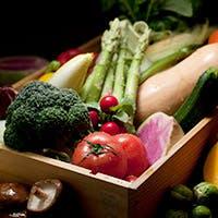 完全無農薬野菜など、こだわりの素材で大地の恵みと旨味を堪能