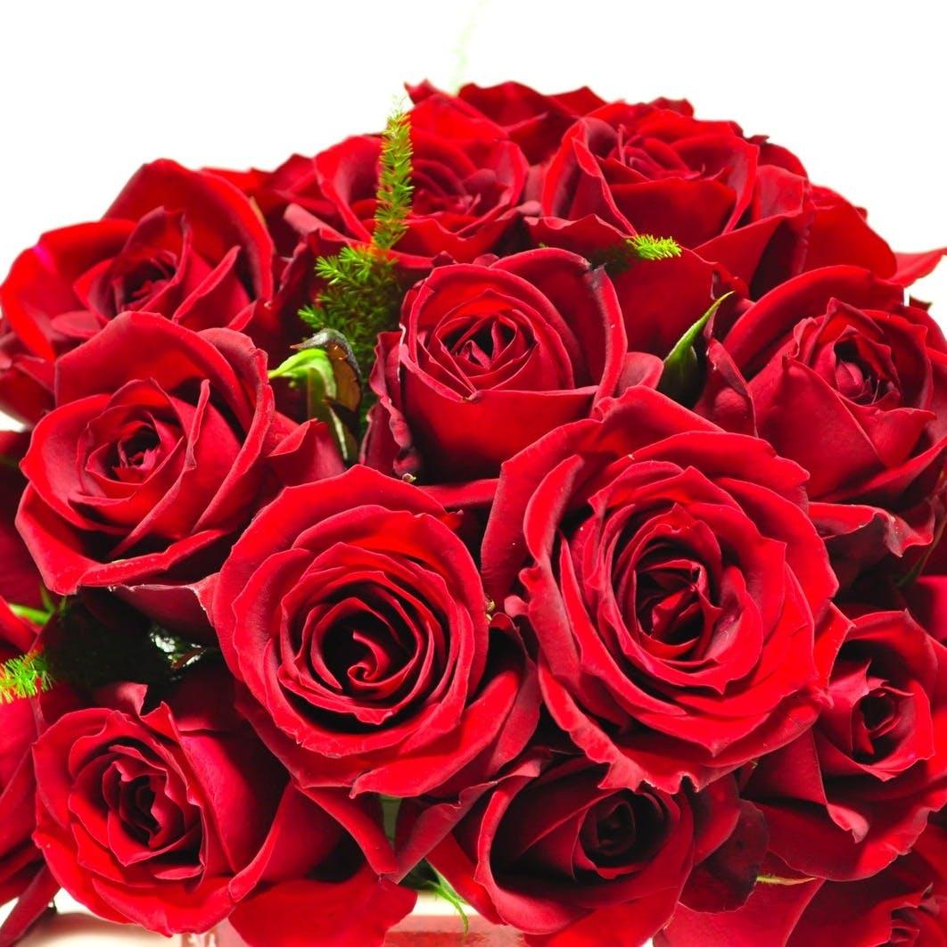 【大切な方への贈り物に】薔薇の花束