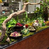 華道家プロデュースによる、表参道ヒルズ店だけの華やかなサラダビュッフェ台は圧巻