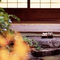 春夏秋冬の京の味