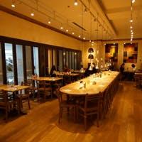 内装やデザインはオシャレで開放的な各国共通デザイン