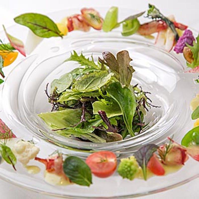 【シェフのおまかせコース】前菜、選べる魚&メイン料理、デザート2皿など