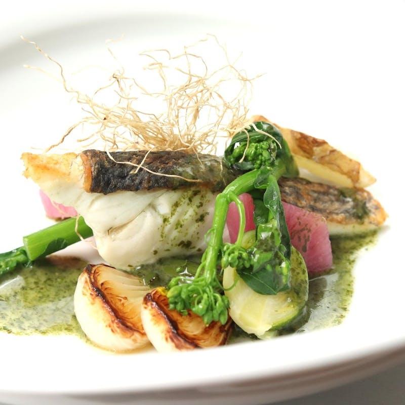【おまかせコース】季節野菜や旬のお魚を贅沢に使用した全8品