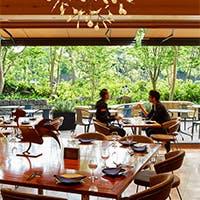 眺望の良い開放感あふれる空間と、「ホトリア広場」に面した風薫るテラス席