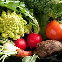 農家直送の新鮮な有機野菜を自家製バーニャカウダでお愉しみください