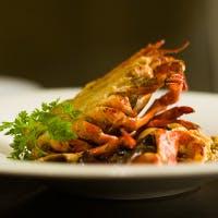 九州&イタリアの厳選食材で織り成す『海のイタリアン』